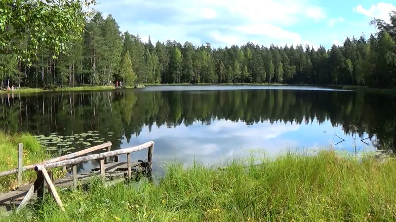 Тимбилдинг на площадке Чёрные озёра